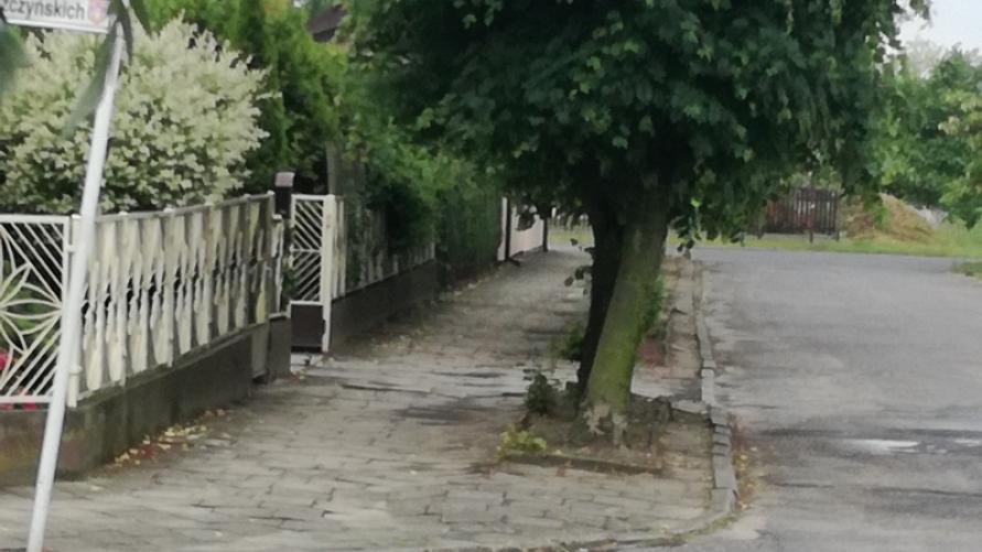 Przebudowa chodnika na ulicy Twardowskiego w Kobylinie