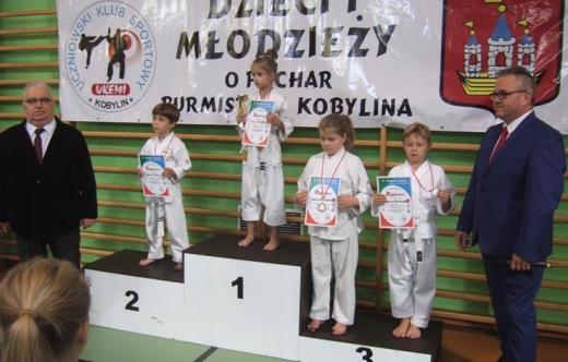 VI Turniej Karate Dzieci i Młodzieży o Puchar Burmistrza Kobylina