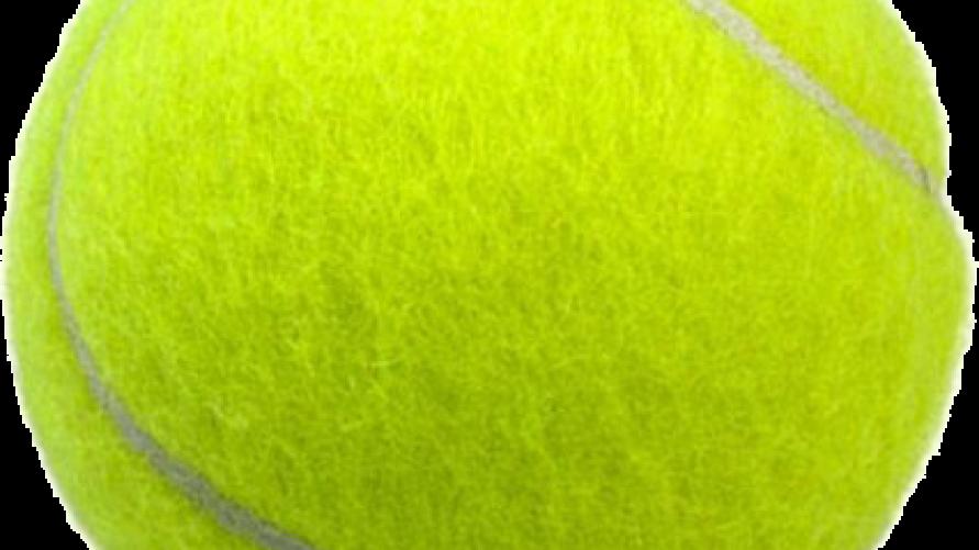 piłka do tenisa ziemnego