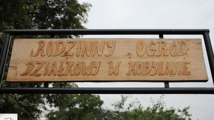 Ogródki działkowe otrzymały dotację z urzędu marszałkowskiego
