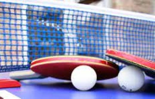 Grafika przedstawia działalność klubu- tenis stołowy.